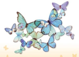 blue butterfly frieze