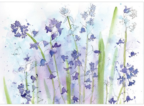 A212 Bluebells greeting card
