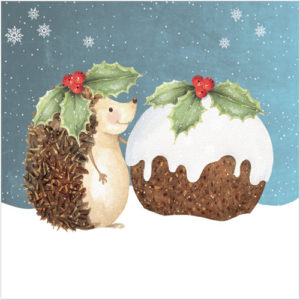 XS30 My Christmas Friend hedgehog christmas pudding card