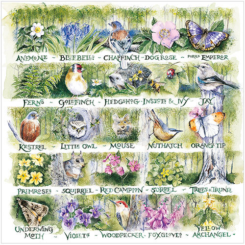 woodland alphabet greeting card