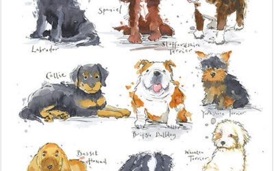 National Puppy Day Celebrate with a Greeting Card from Phoenix Trading