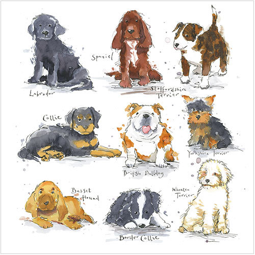 ws484 puppies puppy dog greeting card pet sympathy