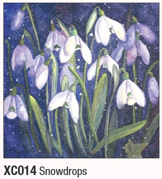 Snowdrops Floral Christmas Cards