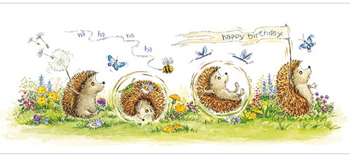 Hedgehog Birthday Card L314
