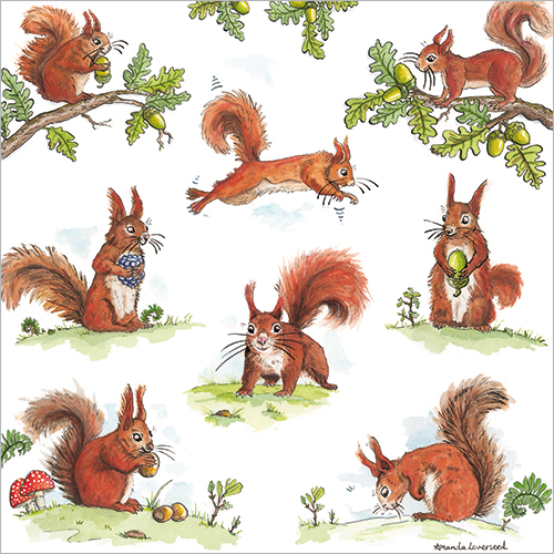 Red Squirrel Greeting Card FP6023