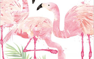 Flamingo Birthday Card from Flamingo Paperie of course!