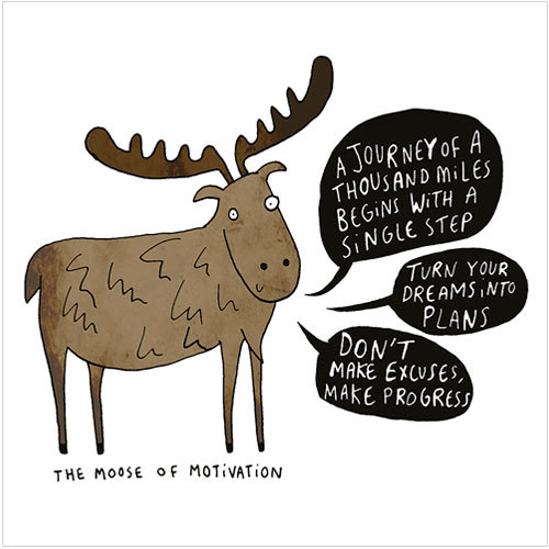 WS407 Moose of Motivation greeting card